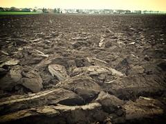 Frisch gepflgter Acker (marcus.buchwald) Tags: landwirtschaft agriculture acker boden erde pflug