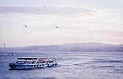 Sea (agata renata) Tags: city travel turkey istanbul document streetphoto reportage turcja stambu