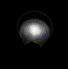 night light (christophhornung142) Tags: red green rot colors yellow night licht purple nacht sony illumination led gelb blau laterne farbe bume mannheim violett leuchte luisenpark langebelichtung strucher winterlichter sonyalpha6000 stimmunglichtknstler