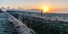 Misty cold morning in February (Explored 4-mar-16) (JnHkstr) Tags: morning winter sunrise landscape nikon bevroren ochtend landschap zonsopkomst gassel kraaijenbergseplassen