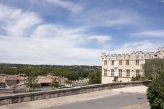 Musee du Petit Palais (rfzappala) Tags: france europe du des musee palais avignon rocher languedoc petit doms 2015