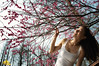 Under Blossoms (Andy Brandl (PhotonMix)) Tags: nature spring nikon growth youngwoman plumblossoms photonmix