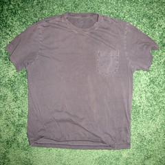 t shirt 02a (seanduckmusic) Tags: tshirts blouses witsendep