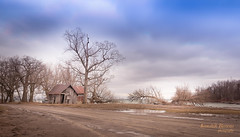 Under The Blue Sky (s1ss0r) Tags: blue trees sky brown ontario canada abandoned home nature beautiful clouds ruins quiet cloudy lonely wilderness desolate midday isolated secluded princeedwardcounty