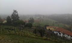 Lomagna  Km 14  06/03/16 (Londrina92) Tags: winter nature fog walking landscape outdoor hiking foggy hills brianza lombardia hilly collina lombardy wintery contryside camminata nebbiolina nebbioso lomagna tapasciata