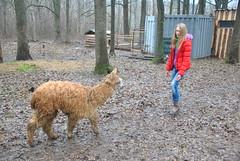 DSC_0074 (Rinswid) Tags: park nature animal spring kharkov feldman ecopark