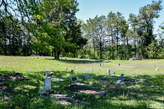 DSC_0291.jpg (SouthernPhotos@outlook.com) Tags: cemetery us unitedstates alabama sumtercounty larrybell browncemetery emelle larebel larebell