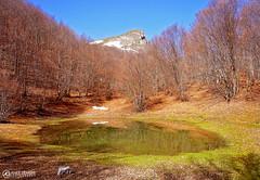 Labunishki Bacila   Mala lokva, Mountain puddle (Amer Demishi) Tags: mountain landscape puddle natural mountainlake jablanica struga lokva labunishta labunishkibacila