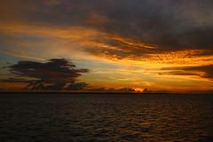 darwin sunset (giannhs_sk) Tags: autumn light sunset cloud beautiful clouds canon lights fantastic colours ngc australia darwin pancake canon6d canonef40mmf28stm