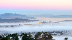 Fog (davidyuweb) Tags: sanfrancisco morning bridge st fog dawn golden gate san francisco low ignatius sfist luckysnapshot stignatiussanfrancisco