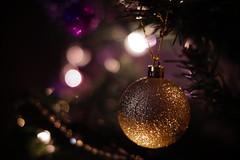 Very late uploads Series (miroslav.hajduk) Tags: xmas light tree closeup 50mm purple bokeh low f18 dimmed slta58