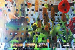 775 (Simone-C) Tags: rotterdam blaak architettura mvrdv markthal scharpstraat mercatorotterdam