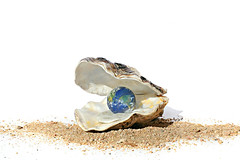 oyster (brescia, italy) (bloodybee) Tags: world sea stilllife food art fun globe sand theatre o earth humor shakespeare literature planet letter seafood pearl oyster mollusk 365project 52weeksproject themerrywivesofwindsor theworldismyoyster azproject