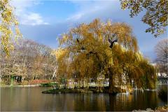 Herbst in Baden 04 (lady_sunshine_photos) Tags: austria europa herbst baden niedersterreich herbstfrbung doblhoffpark