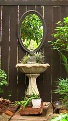 Buddha series (carmacke~) Tags: garden buddha sacredspace