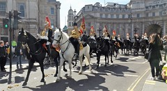 blues & royals-household cavalry mounted regiment-freedom of the city of london parade 20 04 2016 (3) (philipbisset275) Tags: city london freedom unitedkingdom parade centrallondon bluesroyals englandgreatbritain householdcavalrymountedregiment 20042016