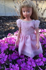 There's a Cricket in my Phlox (Foxy Belle) Tags: pink flowers brown girl vintage hair spring eyes doll dress little sister character spice cricket sugar american 1960s toots straight bangs phlox creeping tressy