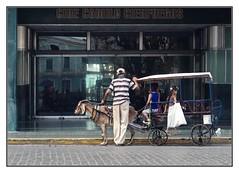 Transporter (kurtwolf303) Tags: people topf25 coach topf50 topf75 500v20f carriage stage kutsche cuba streetphotography goat santaclara caribbean persons 800views kuba omd karibik ziegenbock 900views 1000v40f 250v10f strasenfotografie micro43 microfourthirds olympusem5 kurtwolf303