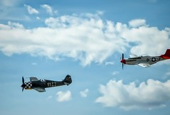 A vintage WWII aircraft gives chase during a simulated dogfight at the 2014 Air Show of the Cascades near Madras, Oregon (mharrsch) Tags: oregon vintage airplane aircraft aviation wwii madras airshow mharrsch airshowofthecascades