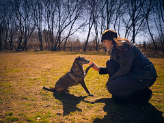 Pooch and Person Portrait No. 3 (StephenCaissiePhoto) Tags: park trees portrait sky urban woman dog toronto mamiya grass outdoors person spring paw shadows danforth april highfive backlit kneeling vignette phaseone captureone