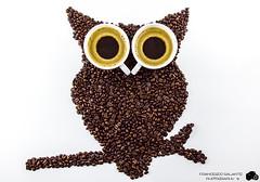 Occhi di Caff! (Franc91) Tags: art coffee canon studio eos is photo shot creative occhi owl di l session usm caff f4 lightbox whitebox 6d gufo 2470 tazze creativit chicchi