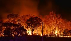 Hazard Reduction Burn (~Jek~) Tags: geotagged fire australia canberra aus prescribedburn controlledburn bushfire australiancapitalterritory hazardreductionburn canberranaturepark mountwanniassa wanniassahillsnaturepark actparksandconservationservice mtwanniassa geo:lat=3538675615 geo:lon=14911567479