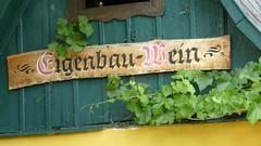 Eigenbau-Wein (rochpaul5) Tags: leica lumix austria wine mai grape wein grinzing