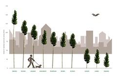 Heerlen de groenste stad van Nederland (iBSSR who loves comments on his images) Tags: de nederland stad heerlen groenste