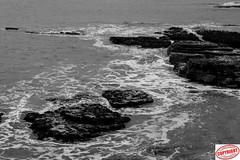 IMG_4266 Headland (Joanne 1967 (SIMPLY PHOTOGRAPHY)) Tags: sea headland hartlepoolheadland joanneshaw simplyphgotography