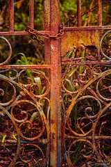 A rust door (maria manuela photography) Tags: abstract texture colors fence photography rust gate rustic perspective mariamanuelaphotography