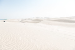 Inland Sea (Avi Viljoen) Tags: raptor qatar inlandsea
