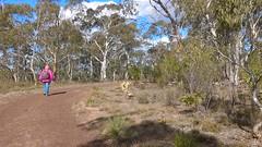 Para Wirra 38 (WEA Ramblers) Tags: hiking australia bushwalking southaustralia parawirra yattalunga fayharding