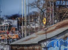 Hook (PAJ880) Tags: urban boston ma waterfront crane shed east scrapyard hook