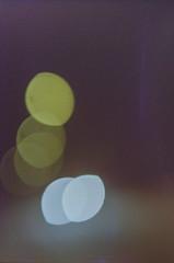 201511xx 50mm 1.4 dubbel exponerings rulle med Jonas  Gbg - Ume - supra 400 at 100 (Sina Farhat - Webcoast) Tags: november flowers light green film colors analog gteborg bokeh colorfull 14 gothenburg ume blommor olympusom2 daynight 031 wideopen frger ljus c41 2015 canonf1n canon50mm14 grnt palmhuset frgglad zuiko50mm14 dagnatt dubbelexponering jonaslundstrm dslrscanned