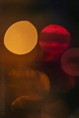 Jouluyö, juhlayö (JP Korpi-Vartiainen) Tags: christmas light tree yellow finland dark december decoration atmosphere finnish valo joulu koriste suomalainen keltainen tunnelma joulukuu warmfeeling joulupuu pime㤠lã¤mmin
