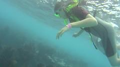 pennekamp_05 (ericvdb) Tags: statepark snorkeling lyra floridakeys keylargo johnpennekamp