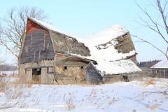 Brokeback Barn (Mick Loyd) Tags: abandoned barn dilapidated collapsed brokeback january132015eastofselkirkbarnshomes