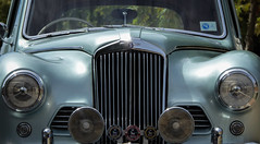 Sunbeam Talbot - full frontal (Theen ... busy) Tags: glass lumix curves headlights bumper chrome adelaide grille badges heavy majestic windscreen wipers rounded steeringwheel wingmirror dignified foglights drivingmirror matronly sunbeamtalbot theen silverycyan