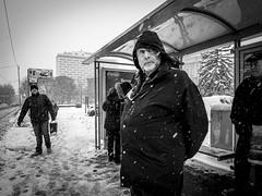 (Miran Kramar) Tags: street winter urban snow olympus zagreb streetphoto em1 1235