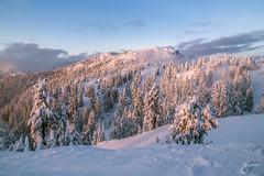 Mount Seymour 2015/16 (jennchanphotography) Tags: travel winter wild mountain snow canada ski tourism nature sport snowboarding skiing bc landmark tourist explore local seymour iconic attraction chairlift activities mountseymour jennchanphotography