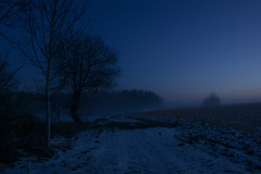 Blaue Stunde und Nebel