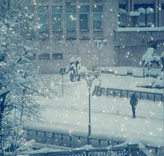 Winter in Gabrovo (R_Ivanova) Tags: winter snow monochrome town sony bulgaria textured gabrovo   rivanova