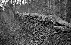 Stone Fence (bclook) Tags: leica film analog 35mm noiretblanc kodak kentucky trix d76 summicron f2 schwarzweiss m6 filmisnotdead istillshootfilm selfdevelooped