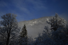 Yes-snow 03 (onesecbeforethedub) Tags: trees winter mountain snow mountains tree nature germany natural picturesque lanscape vassilis vasilis flusser vilem galanos onesecbeforethedub onesecbeforetheend