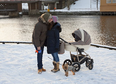 family out for a walk (mrs_fedorchuk) Tags: york family boy dog pet baby yorkie norway canon stroller father mother son terrier scandinavia yorkshireterrier trondheim bakklandet canoneos450d