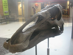 IMG_4236 (FigmentJedi) Tags: minnesota dinosaurs sciencemuseumofminnesota
