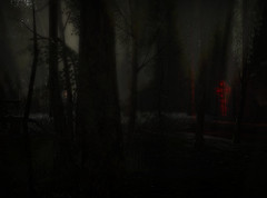 Days to come 3 (jesseryandragovar) Tags: carnival dark grunge apocalypse sl secondlife virtual horror insanity survival everwinter postapoc