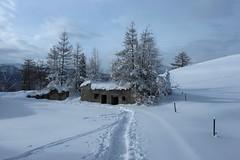 Chez Larze (bulbocode909) Tags: nature suisse hiver arbres neige paysages brume valais montagnes ruines piquets sentiers chemindessus montchemin chezlarze