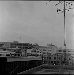0611 (nori 4_4) Tags: yashicamat124g yashinon 8035