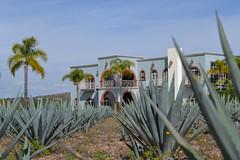 Postales de Mi Pueblo: Hacienda Santa Cecilia (Xellif) Tags: naturaleza nature mxico landscape jalisco paisaje postal colotln